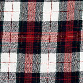 Winter Plaid